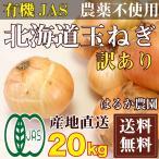 【訳あり 裂皮】玉ねぎ 10kg×2箱 有機JAS (北海道 はるか農) 産地直送