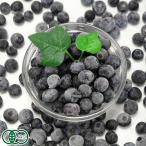 クール冷凍便 冷凍ブルーベリー(家庭用) 500g×4パック オーガニック (神奈川県小田原 広石農園)