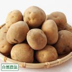 じゃがいも 男爵 20kgサイズ混合 自然農法 (北海道 太田農園) 農薬不使用 送料無料