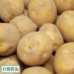 とうや(馬鈴薯) 20kg 自然農法 (北海道 太田農園) 無農薬じゃがいも 産地直送