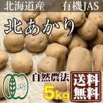 北あかり (2Sサイズ)訳あり 5kg (北海道自然農法の会) 有機JAS 自然農法 農薬不使用 送料無料
