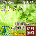 [クール便] 玉レタス 7〜8kg×2箱(北海道自然...