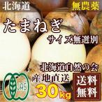 有機JAS 玉ねぎ 15kg×2箱 (北海道自然農法の会)有機JASたまねぎ 農薬不使用 産地直送 送料無料