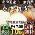 [在庫処分キャンペーン] 有機JAS 玉ねぎ 10kg(北海道自然農法の会)有機JASたまねぎ 農薬不使用 産地直送 送料無料