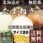 [在庫処分キャンペーン] 無農薬 玉ねぎ M〜2Lサイズ混合 20kg(北海道 自然農法の会)有機JASたまねぎ・無農薬野菜・送料無料