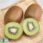 ショッピングフルーツ キウイフルーツ 3kg(神奈川県 小田原有機農法研究会)有機JAS無農薬キウイ・送料無料・産地直送