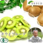 奇異果 - キウイフルーツ 3kg(神奈川県 石綿敏久) 有機JAS 農薬不使用 無肥料 送料無料 産地直送 オーガニック