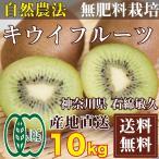 【予約商品】キウイフルーツ 10kg(神奈川県 石綿敏久) 有機JAS 農薬不使用 無肥料 送料無料 産地直送 オーガニック