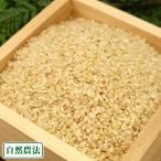 新米 農薬不使用(無農薬) 河原さんのお米 玄米10kg 自然農法 (岡山県 河原農園) 産地直送