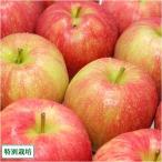 【家庭用】 無・無 ジョナゴールド 10kg箱 特別栽培 (青森県 北上農園) 産地直送