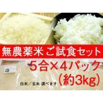 お米 無農薬米(白米玄米選べます) ご試食セット5合×4パック(ふるさと21)自然農法・送料無料・お試し