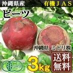 fs21_midori-beats1
