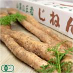 自然薯 家庭用 約1.2kg(1〜5本)(熊本県 那須自然農園)有機JAS無農薬野菜・送料無料・産地直送・オーガニック