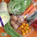 せっちゃんの有機野菜セット 有機JAS (青森県 自然食ねっと青森) 産地直送