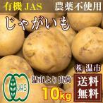 とうや(馬鈴薯) 10kg(温市)じゃがいも 有機JAS・無農薬・送料無料