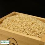 お米 新米 農薬不使用(無農薬) つがるロマン 玄米 10kg 自然農法 (青森県 小田農園) 産地直送