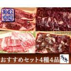 牛肉 大仁牧場牛 おすすめセット 4種4品(冷凍牛肉・クール便送料無料)