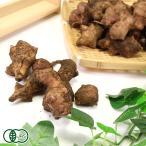 有機 赤菊芋(土付き) 1kg 有機JAS (熊本県 株式会社ろのわ) 産地直送