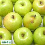 青森産 りんご 訳あり 王林 5kg箱 特別栽培 りんご (青森県 さいとうりんご園) 産地直送
