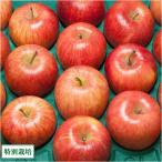 【訳あり】 シナノスイート 10kg 特別栽培 (青森県 さいとうりんご園) 産地直送