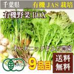 【クール冷蔵便】有機野菜BOX 有機JAS(千葉県 オーガニックすみだ農園) 無農薬野菜詰め合わせパック 産地直送