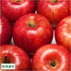 【予約商品】りんご ふじ A品 3kg箱 特別栽培 (青森県 田村りんご農園) 産地直送