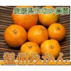 温州みかん A・B品混合10kg(愛媛県 たなか農園)無農薬・無化学肥料柑橘