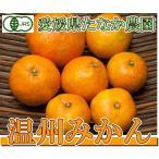 有機JAS 温州みかん A・B品混合5kg(愛媛県 たなか農園)無農薬柑橘