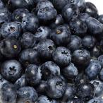 【クール便】大粒ブルーベリー 生食用 350g×4パック (群馬県 月夜野ブルーベリー) 産地直送