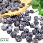 【クール冷凍便】冷凍ブルーベリー 生食用 500g (群馬県 月夜野ブルーベリー)