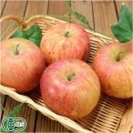 有機 りんご ふじ A品 約3kg 有機JAS (青森県 和楽堂養生農苑)