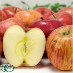 【家庭用・小玉】 有機 りんご ふじ 1kg 有機JAS (青森県 和楽堂養生農苑)