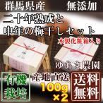 二十年熟成と申年の梅干しセット 各1箱(木製化粧箱入り) 100g×2箱 (群馬県 ゆあさ農園)有機栽培梅 産地直送