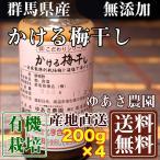 有機JASかける梅干し 200g×4本 (群馬県 ゆあさ農園)有機栽培 梅 無添加 天然塩「海の精」使用 送料無料 産地直送
