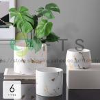 植木鉢 花瓶 プランター おしゃれ 鉢植え 花 栽培 プレゼント ギフト 母の日 通販 かわいい ガーデニング ホワイト ゴールド繊細 おしゃれ リラックス