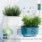 植木鉢 プランター おしゃれ 鉢植え 花 栽培 プレゼント ギフト 母の日 通販 かわいい ガーデニング ホワイト グリーン ブルー清潔感 リラックス