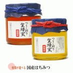 国産はちみつ 450g 2個セット 送料無料 美味しいハチミツ 安全な蜂蜜