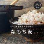 皮付き もち麦 950g 国産 ダイシモチ 紫もち麦 雑穀 雑穀米 ダイエット 無添加 メール便 こめたつ 自然の蔵
