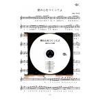 「僕の心をつくってよ」平井堅 篠笛カラオケCD+篠笛楽譜
