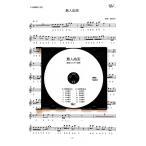 「島人ぬ宝」BEGIN 篠笛カラオケCD+篠笛楽譜