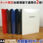 アルバム 大容量 フエルアルバム ナカバヤシ ドゥファビネ A4サイズ 台紙増量タイプ IT-A4D-161/20L アH-A4D-161/20L