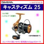 ダイワ  キャスティズム 25  QD 06PE  スピニング|