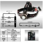 ◆ZEXUSシリーズ最強ワイド、ピンポイント切替機能搭載◆