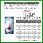 ヒロミ産業  電気ウキ  e-ドングリV6  ホワイト  サイズ 0.5号  送料無料