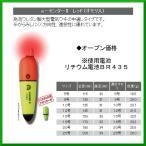 ヒロミ産業  電気ウキ  e-センターII  レッド  サイズ 5号  送料無料
