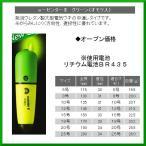 ヒロミ産業  電気ウキ  e-センターII  グリーン  サイズ 12号  送料無料