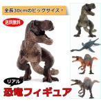 恐竜フィギュア リアル模型 30cm 玩具 大型 ジャンボ 迫力 PVC製 大きい 大サイズ