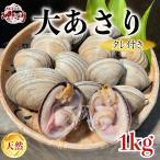 【愛知県産】ひと口では食べられない大あさり 1kg
