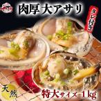 大あさり片貝(大アサリ)6片貝前後 特大サイズ ひと口では食べられない大あさり 【愛知県産】