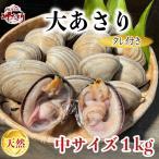 活大あさり(大アサリ)中サイズ 1kg ひと口では食べられない大あさり 【愛知県産】